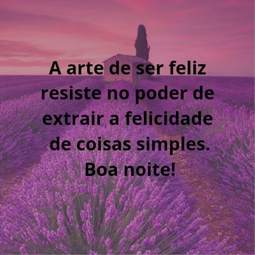 Mensagem colorida de boa noite com flores