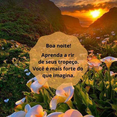 Bela mensagem de boa noite com flores