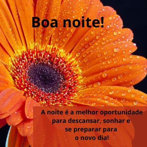 Mensagem de boa noite feliz com flores