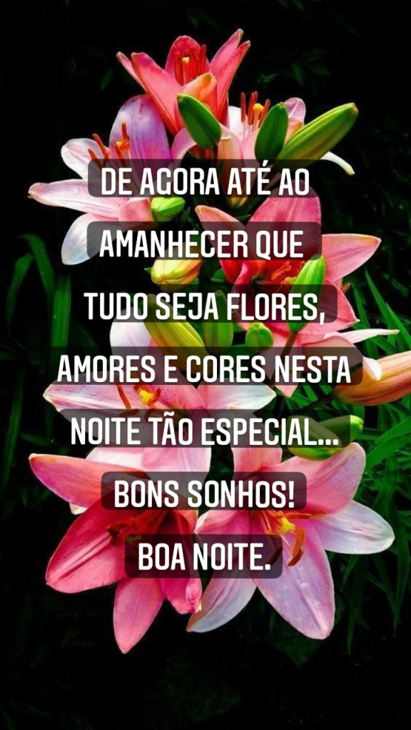 Mensagem de boa noite tranquila e com belas flores