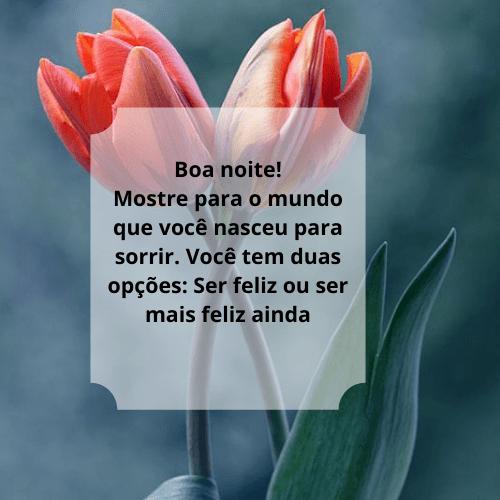Linda mensagem de boa noite com flores