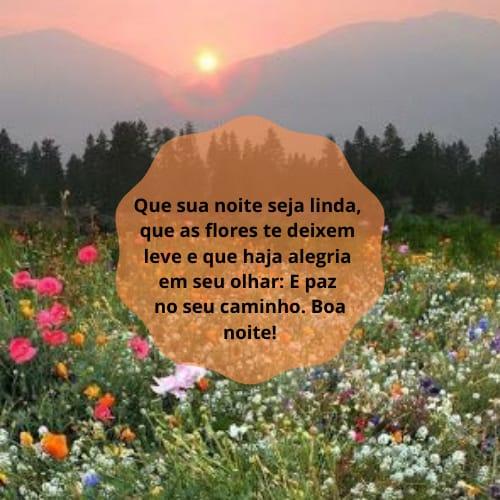 Imagem florida  com mensagem maravilhosa de boa noite