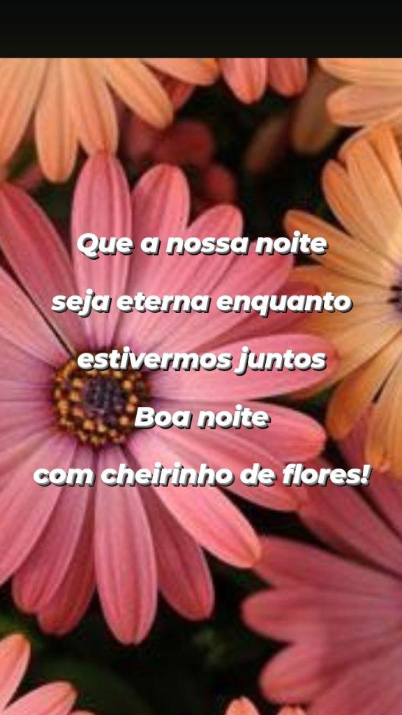 Mensagem leve de boa noite com flores