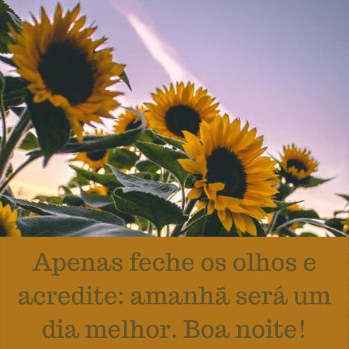 Mensagem de boa noite para dormir com belas flores