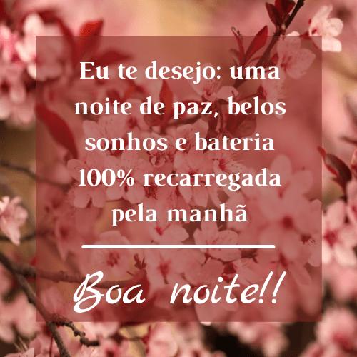 Mensagem de boa noite com flores maravilhosas