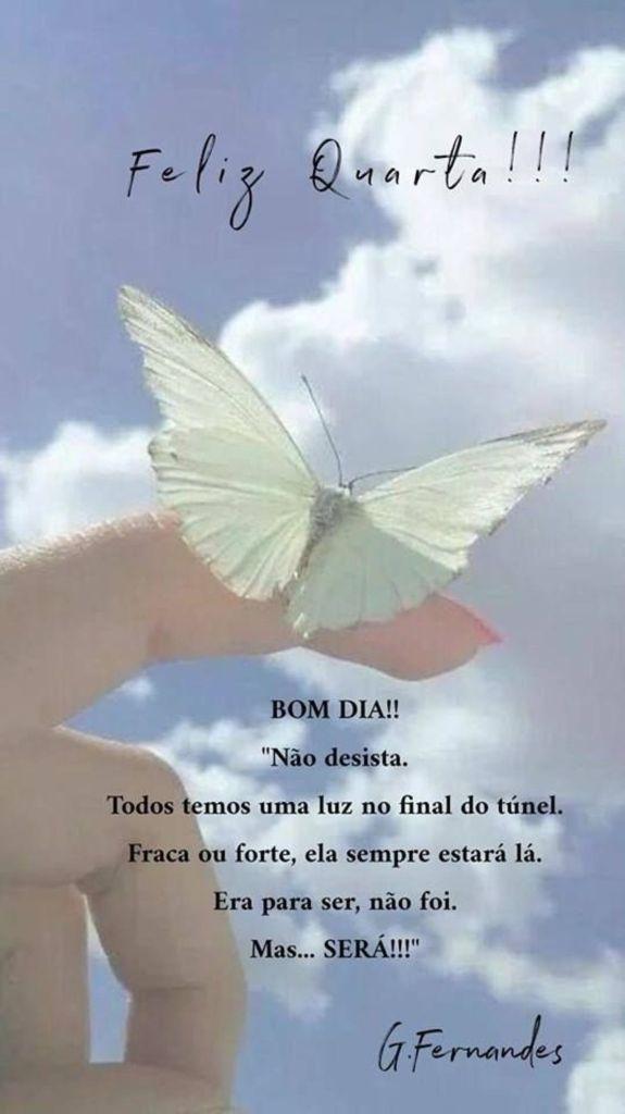 bom dia com borboleta