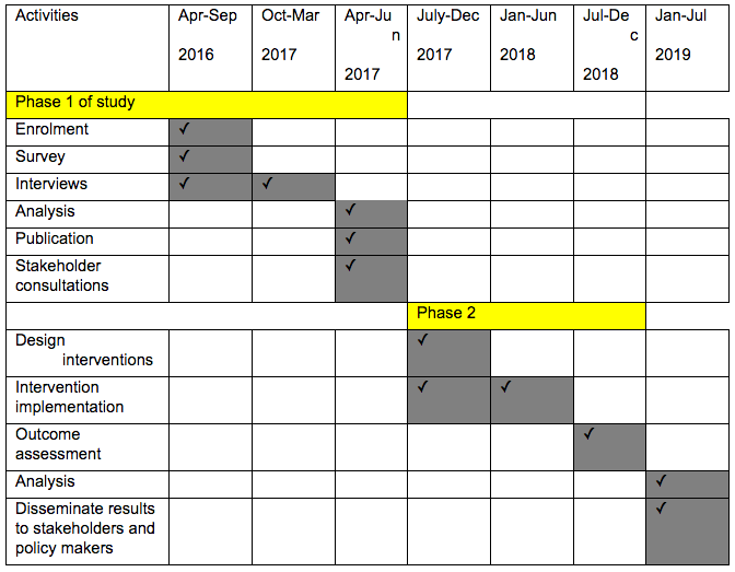 Dorothy-phd timeline