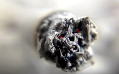 Global Tobacco Meet