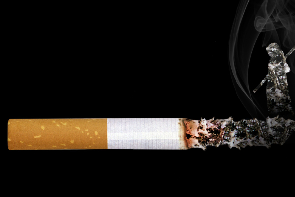 parliamentarians  about tobacco