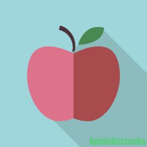 アップルサポートについて