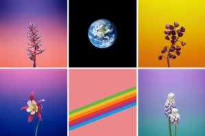 Download iOS 11 GM Wallpapers for iPhone, iPad, iPod