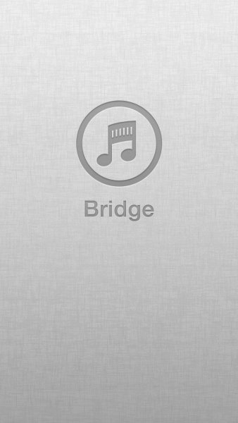 Bridge для iPhone