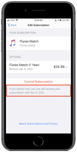 iTunes Match subscription information
