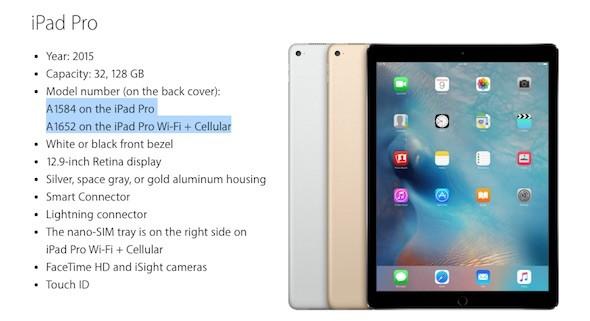 iPad Pro Model