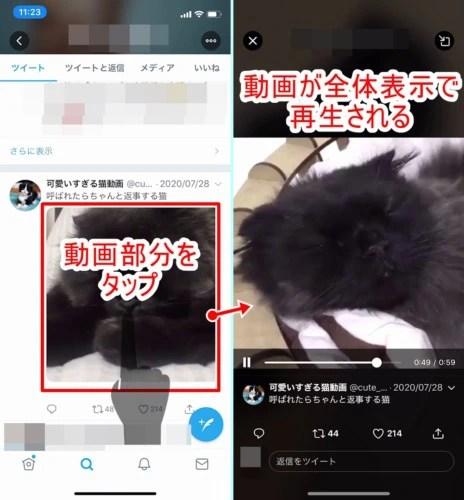 iPhoneでTwitterの動画を全体表示で再生する