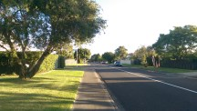 On the road back home. This is a typical Kiwi suburb.