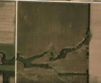 satalite image of a corn field