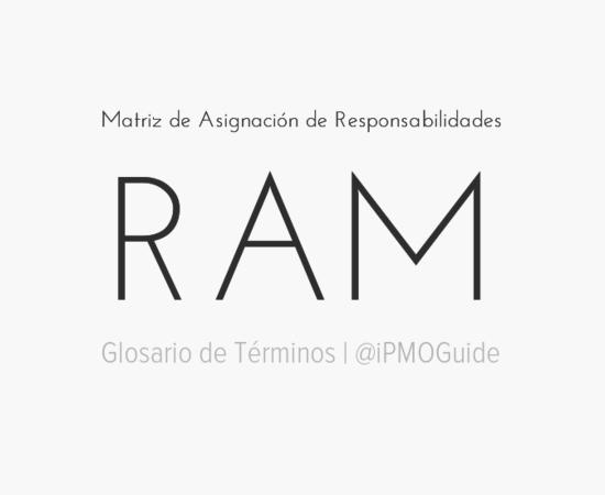 Matriz de Asignación de Responsabilidades (RAM)