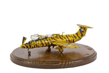 Class 12 Gold - Aero L.29 by Jose Luis Echaide