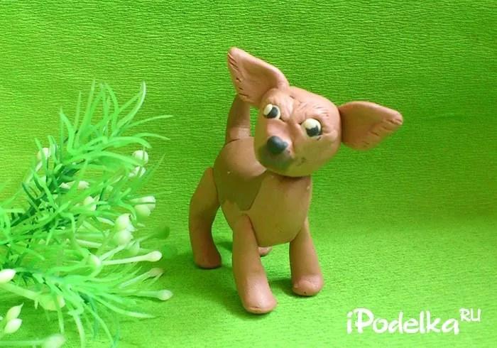 Chó chihuahua từ plasticine