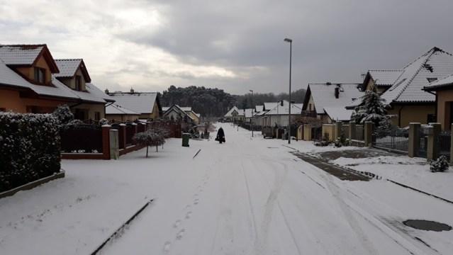 zima w Policach