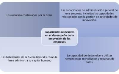 Capacidades relevantes en el desempeño de la innovación de las empresas