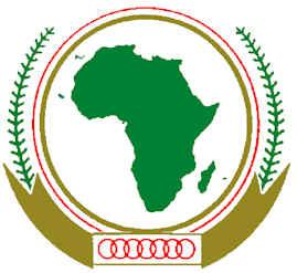 Africa and the Diaspora: The Role and Potential of Region 6