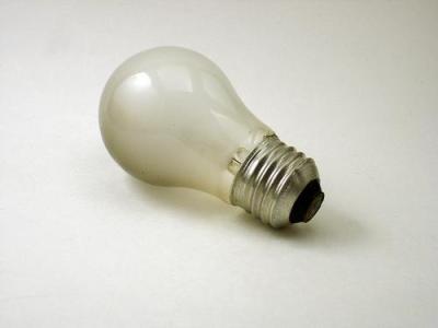 Dim Bulbs in Congress