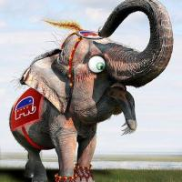 Mr. President, the Elephant in the Room Is Not a Republican