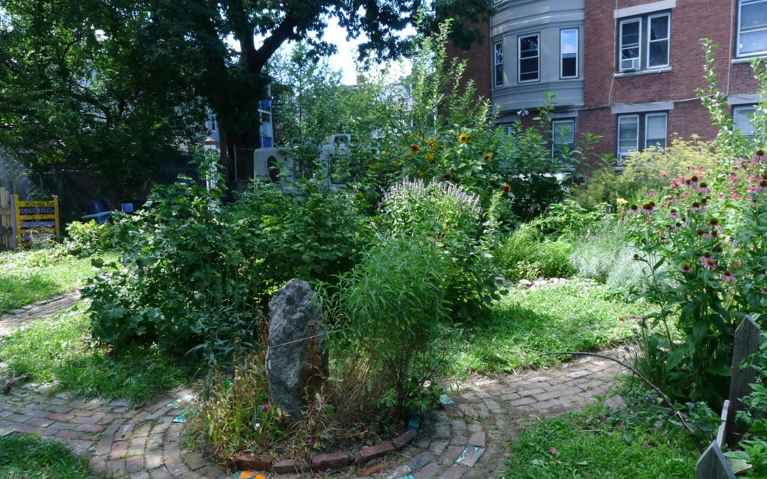 An Orchard Grows in Boston