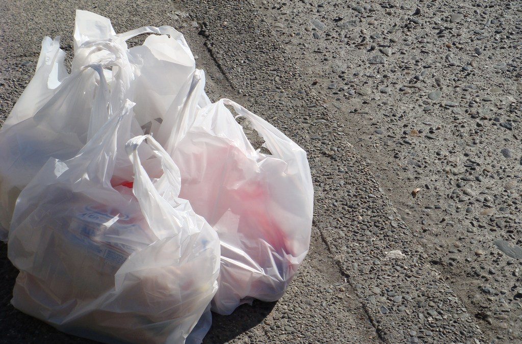 Why It Matters That Texas Is Fighting Over Plastic Bags