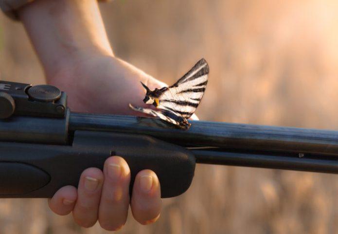 gun-butterfly-peace-war