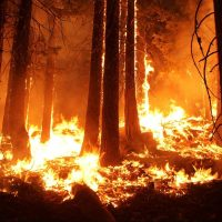 climate change california wildfire
