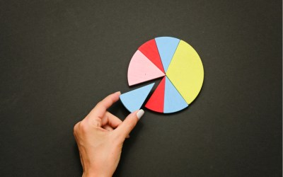 wealth and economic inequality depicted by a pie chart