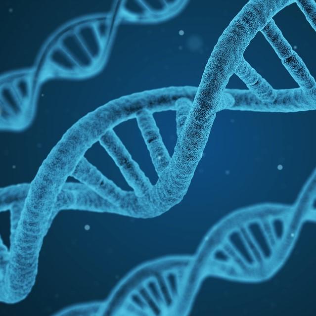Latent defect, proof, DNA, hidden