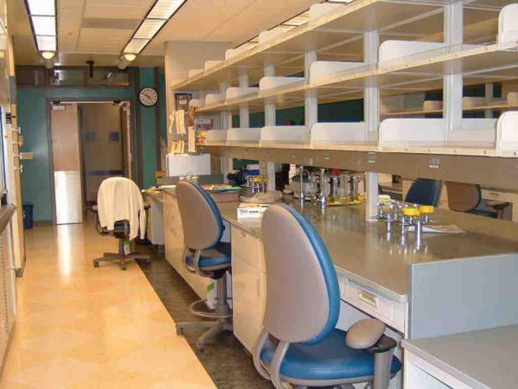Knoepfler-Lab-empty-2006