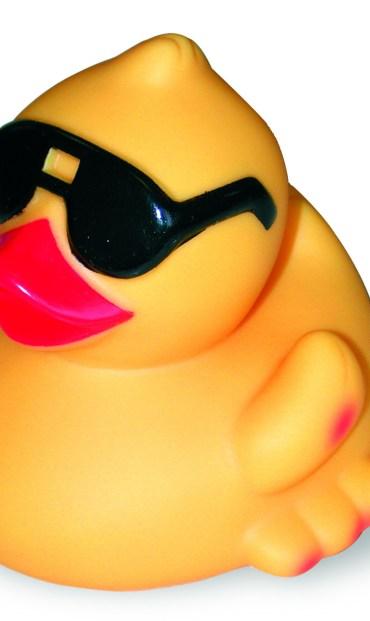 sunny rubber duck, stem cells