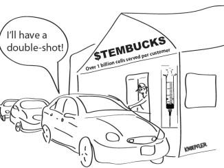 Stem cell cartoon