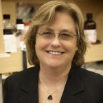 Jeanne Loring interview: optimism on clinical translation of IPS cells
