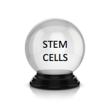 Grading my twenty 2017 stem cell predictions