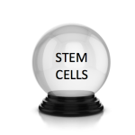 Wait, there's an FDA stem cell meeting this week too? The scoop