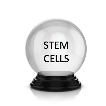 stem cell crystal ball