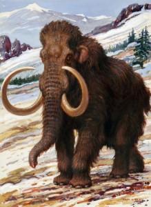 mammoth-219x300