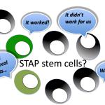 STAP-stem-cells