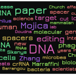 Does Word Cloud of Lander's Heroes of CRISPR Text Suggest Bias?