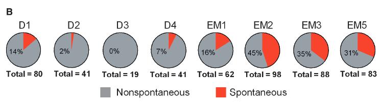inherited-erythromelalgia