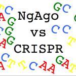 NgAgo a-go-go: top 5 bullet points on upstart CRISPR challenger