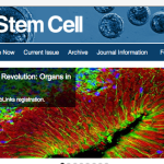 Where to submit my paper? A guide to stem cell journals
