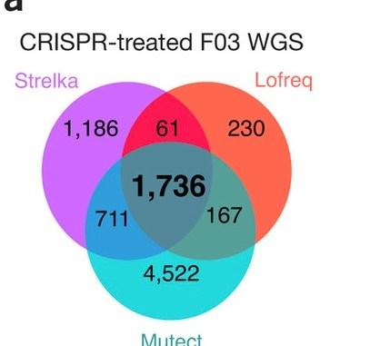 CRISPR mutations Figure 1a