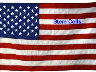 stem cells Memorial Day